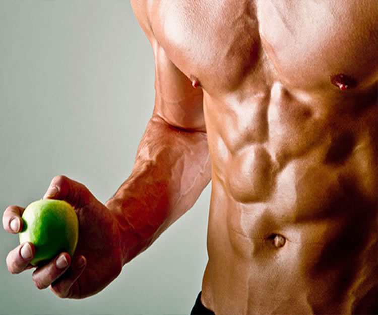 fitness food muscle